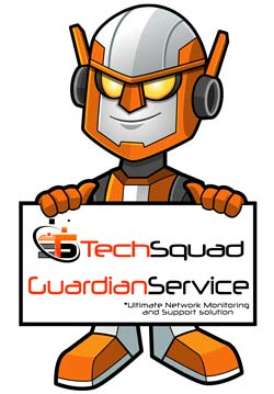 Guardian Service (c) Network Support Plan